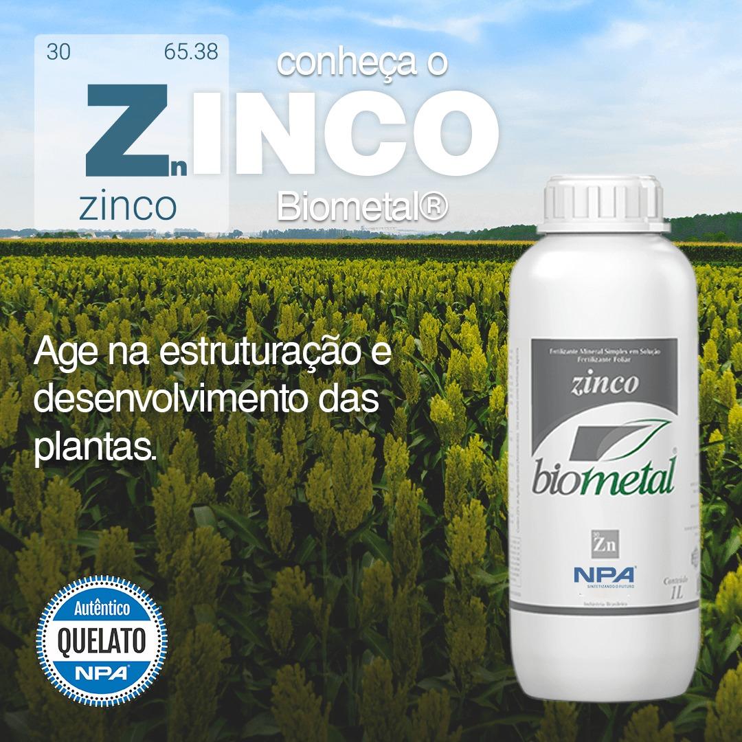 O que é preciso saber antes de iniciar a fertilização com Zinco