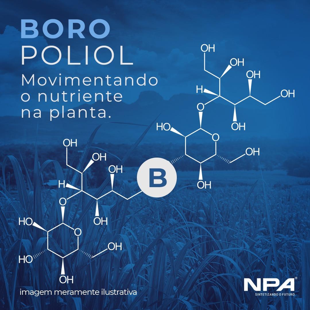 As vantagens no uso do Boro Poliol nas lavouras