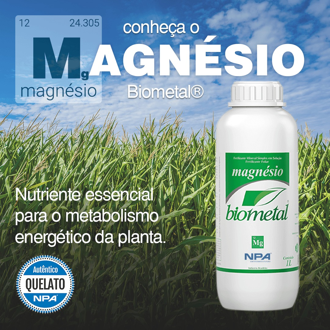Magnésio - o Macronutriente que não pode faltar na sua lavoura