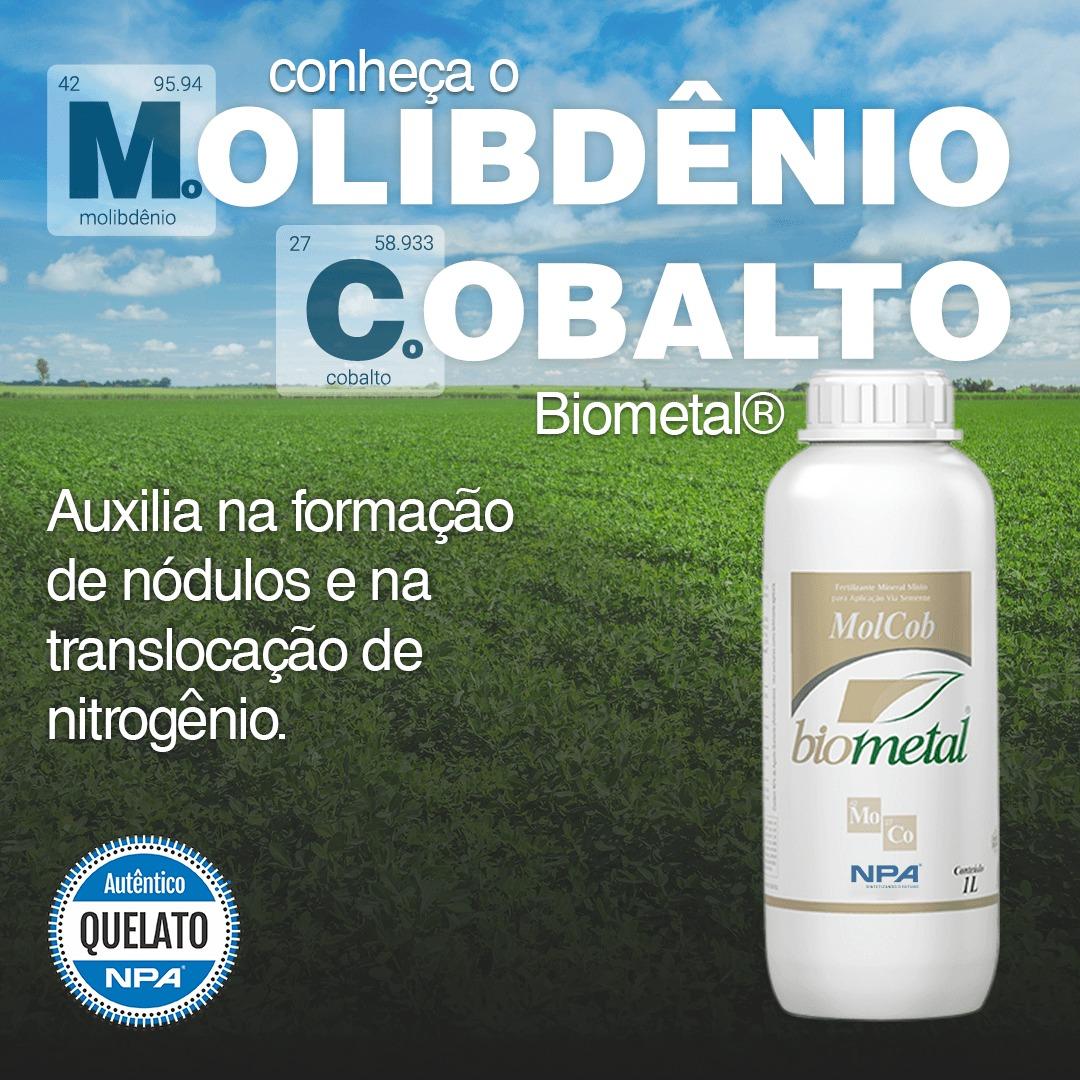 As vantagens no uso de Molibdênio e Cobalto na cultura da soja